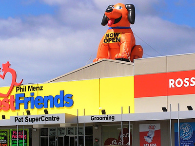 Rooftop Inflatable Doggy Best Freinds New Store Opening
